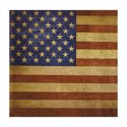 Motivservietten 3-lagig, 33 x 33 cm, Stars & Stripes, Vintage Look, 20 Stk.