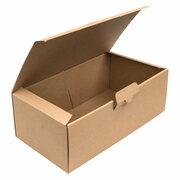 Warensendung Büchersendung Versandkarton 310x170x110mm, braun